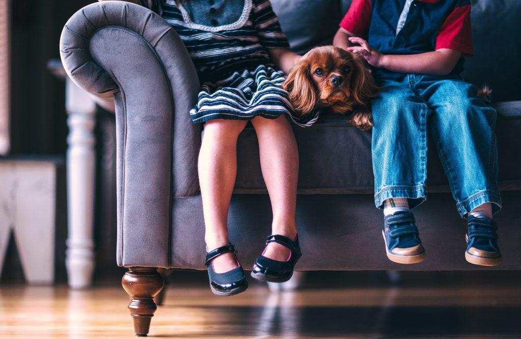 psihoterapia-pentru-copii-si-adolescenti
